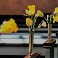 Billede af kirkebænke pyntet med påskeliljer