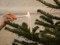 Billede af juletræstænding